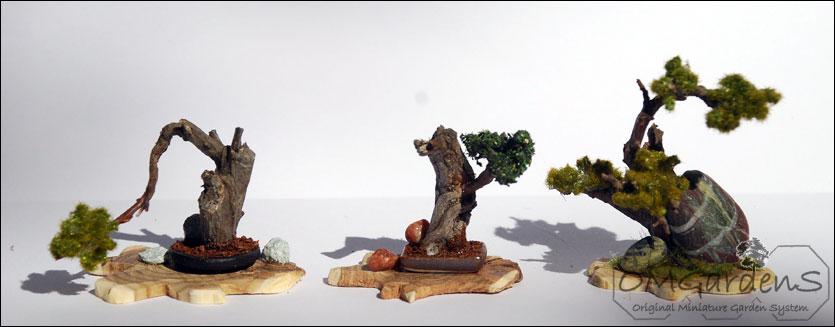 bonsai extra