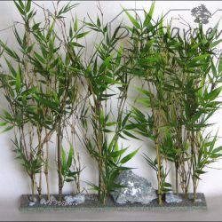 bamboeheg