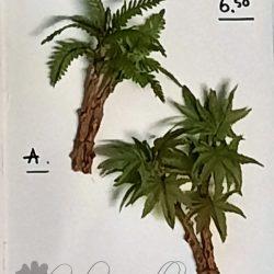 dhz palmboom